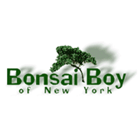 Bonsai-Boy-of-New-York-logo-thevouchercode